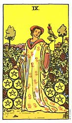 Nine of Coins Tarot card meaning