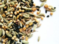 wiccan love spell with seeds in a bottle